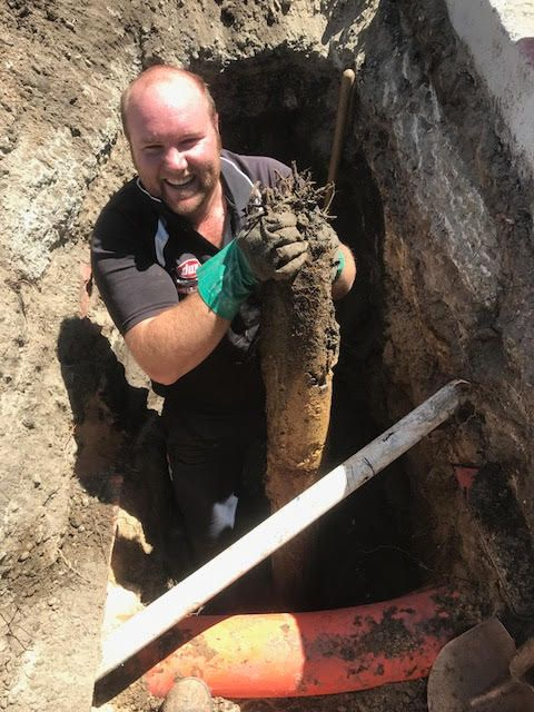 Plumber clearing a drain blocked with tree roots