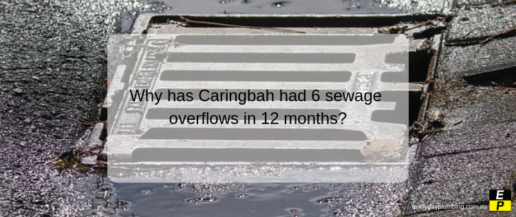 Why has Caringbah had 6 sewage overflows in 12 months?