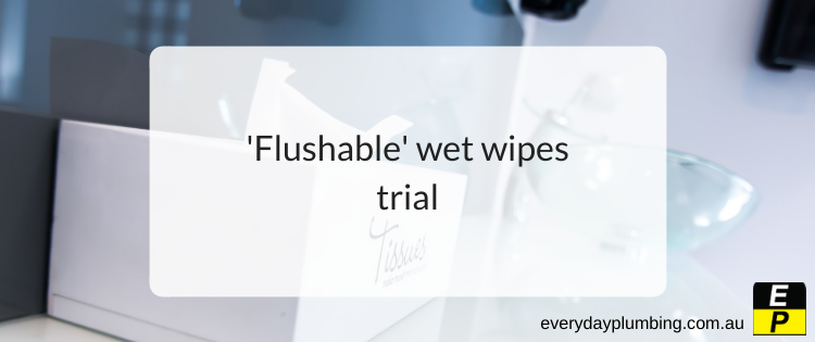 'Flushable' wet wipes trial