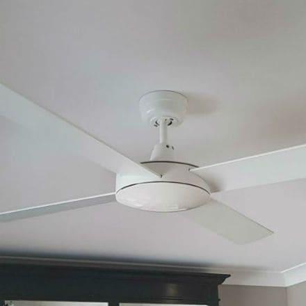 Ceiling Fan Special