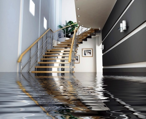 Got water damage? You need to act fast!