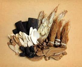 therapies western herbal