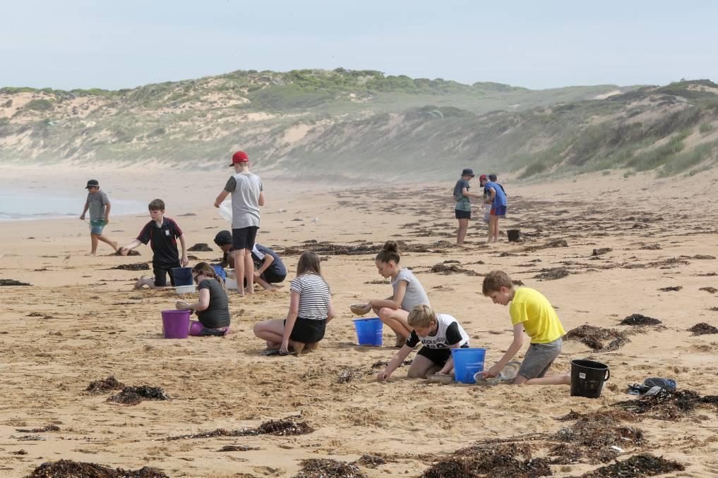 Warrnambool Sewage Plant | Beach Clean-up