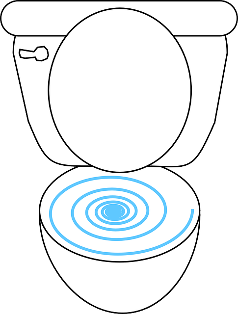 What did you flush during the toilet paper shortage of 2020?