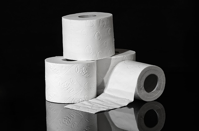 Don't flush anything other than toilet paper!