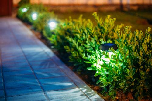 Garden lights by path
