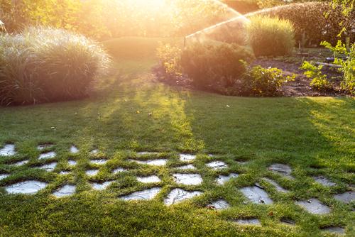 garden with sprinkler