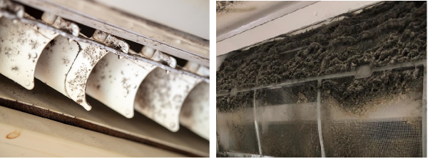 Could a mould outbreak in your aircon affect your health this winter?