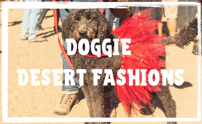 Doggie Desert Fashions