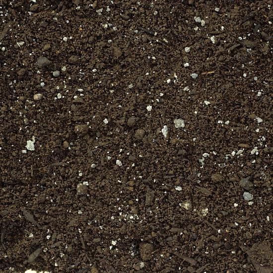 Garden Soils and Garden Mixes
