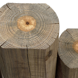 Timber Products - Treated