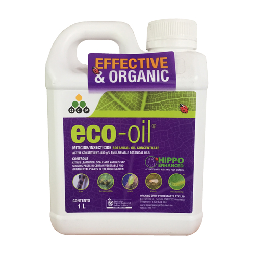 eco-oil Conc 1L