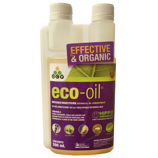 eco-oil Conc 500ml