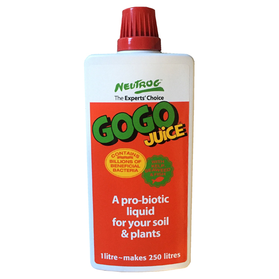 GOGO Juice 1L