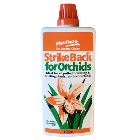 Strike Back for Orchids 1L