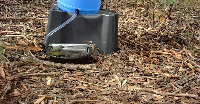 Water Stations for Wildlife