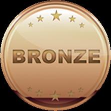 bronze Sponsors Medal