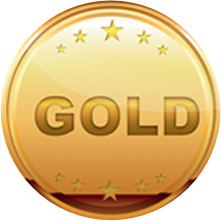 Gold Sponsors Medal