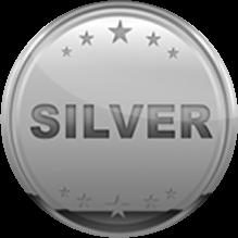 Silver Sponsors Medal