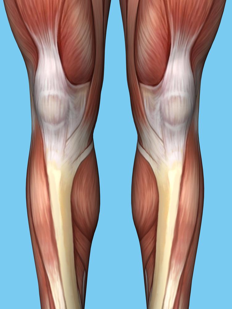 Shin Splints | Treatment Strategies