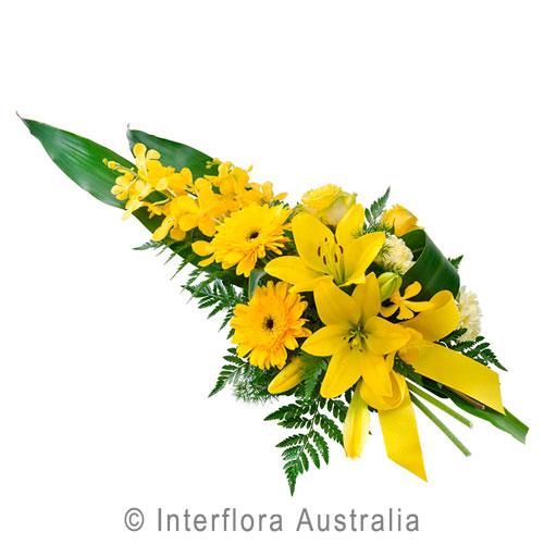 Honor Yellow