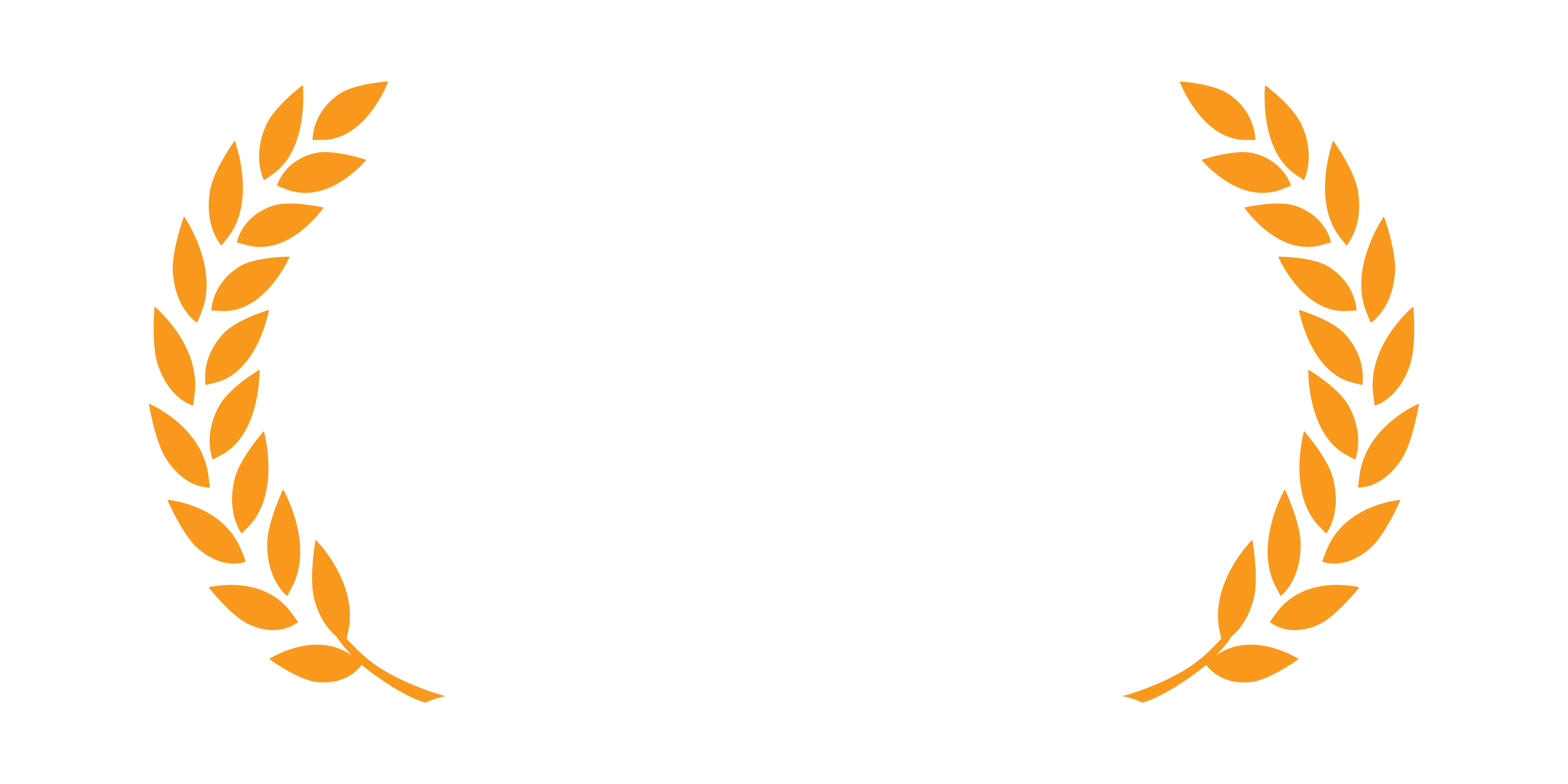 Fitzroy IT is an AWS Partner
