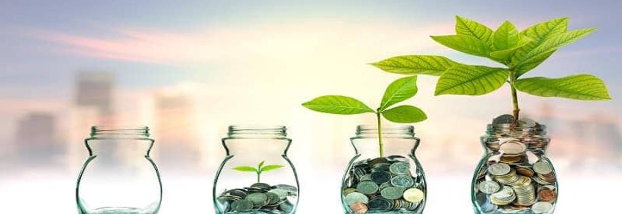 Start-ups raising capital requires good corporate governance