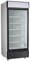 Exquisite DC400P One Glass Door Upright Display Refrigerator