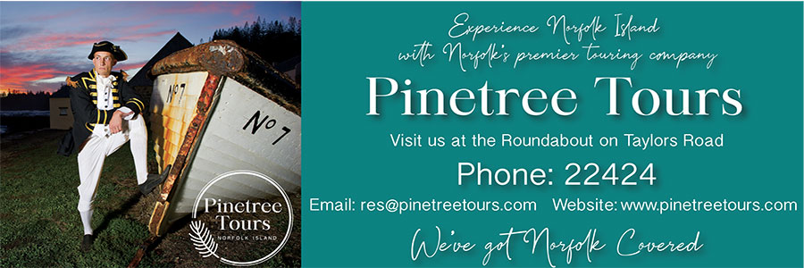 Pinetree Tours